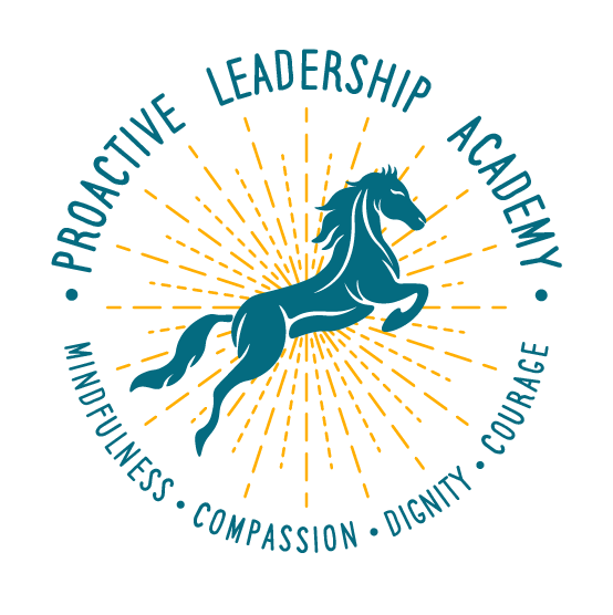proactiveleadershipacademy.com